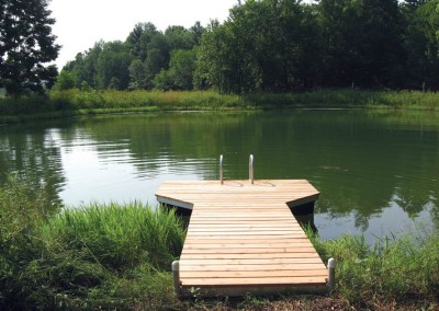 4' x 16' pond dock with cedar decking and aluminum ladder