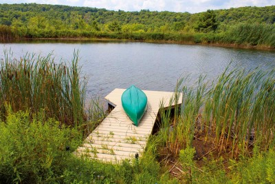 4' x 16' pond dock with NyloDeck decking